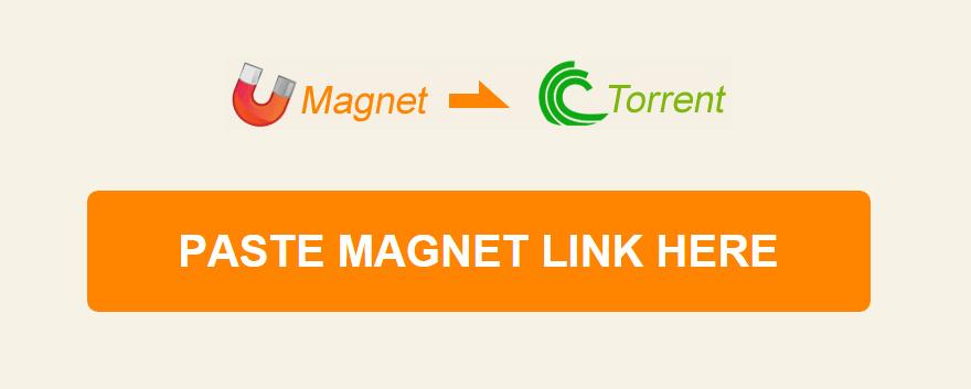 《磁力转种子,种子转磁力网站》